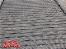 红薯清洗流水线 河北钢网输送机 不锈钢链条传送链