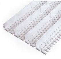 挡板塑料网带
