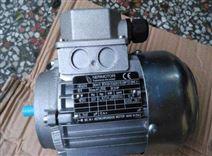 意大利NERI MOTORI單相電機TG40-10/15285